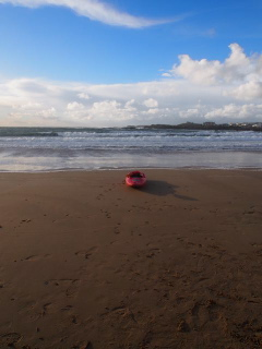 kayak Trearddur Bay beach